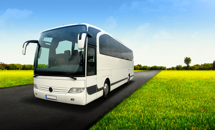 autobus_cursos_cap